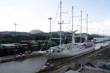 The msy Wind Star Cruise Ship in the Miraflores Locks